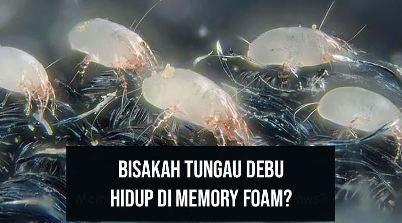 Bisakah tungau debu hidup di memory foam