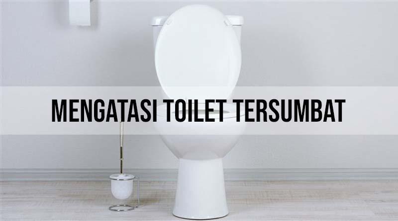 Mengatasi Toilet yang Tersumbat