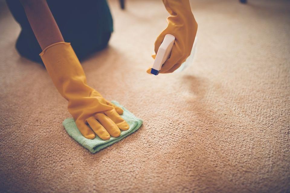 Cara Cepat Membersihkan Bekas Muntah Dari Karpet!